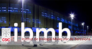 ibmb